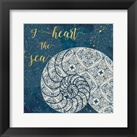 Coastal Lace IV Fine-Art Print