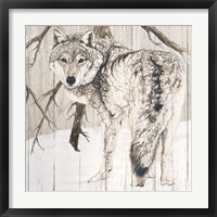 Wolf in Woods on Barn Board Fine-Art Print