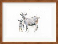 Goat and Kid Fine-Art Print