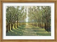 Forest Path Fine-Art Print