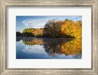 Color On Grist Mill Pond Fine-Art Print