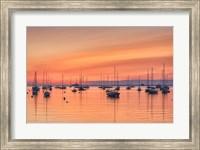 Pastel Harbor Fine-Art Print