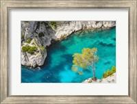Tree on Turquoise Waters Fine-Art Print