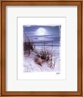 Moonlight Fine-Art Print