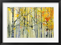 Autumn Birches Fine-Art Print
