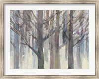 Forest Light Fine-Art Print
