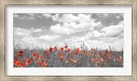 Poppies in Corn Field, Bavaria, Germany Fine-Art Print