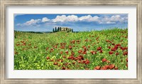 Farm House with Cypresses and Poppies, Tuscany, Italy Fine-Art Print