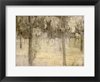 Vineyard Fine-Art Print