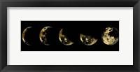 Golden Moon Eclipse Fine-Art Print