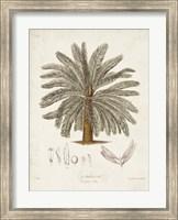 Antique Tropical Palm I Fine-Art Print
