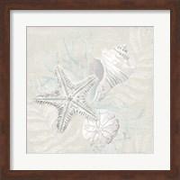 Weathered Shell Sketch I Fine-Art Print