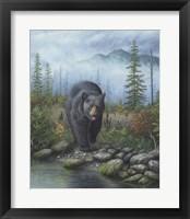 Smoky Mountain Black Bear Fine-Art Print