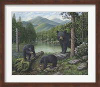 Watching The Cubs Play Fine-Art Print