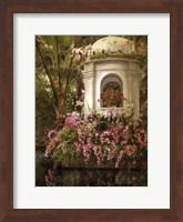 The Orchid Show Fine-Art Print