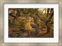 Autumn's Edge Fine-Art Print