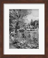 Woodlawn Dreaming Fine-Art Print