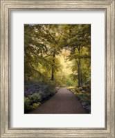Golden Walkway Fine-Art Print