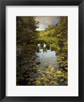 The Wetlands Fine-Art Print
