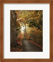 October Finale Fine-Art Print