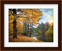 Golden Carpet Fine-Art Print