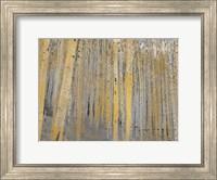 Aspen Forest in Gold Fine-Art Print