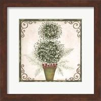 Topiary IV Fine-Art Print