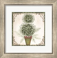 Topiary IV Fine-Art Print