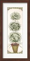 Topiary V Fine-Art Print