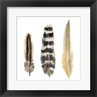 Watercolor Plumes II Fine-Art Print