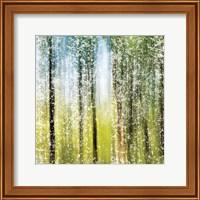 Distressed Forest Fine-Art Print
