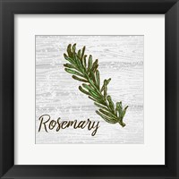 Rosemary on Wood Fine-Art Print