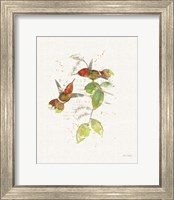 Colorful Hummingbirds II Fine-Art Print