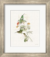 Colorful Hummingbirds III Fine-Art Print