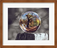 Pop of Color Glass Sphere Fine-Art Print