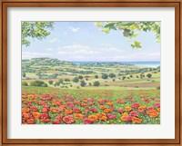 Campo di Papaveri Fine-Art Print