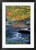 Packers Falls on the Lamprey River, New Hampshire Fine-Art Print