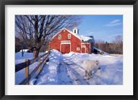 Pony and Barn near the Lamprey River in Winter, New Hampshire Fine-Art Print