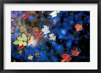 Leaves in a Pond Next to Kilburn Loop Trail, Pisgah State Park, New Hampshire Fine-Art Print