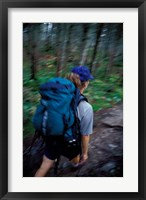 Backpacking on Franconia Ridge Trail, Boreal Forest, New Hampshire Fine-Art Print