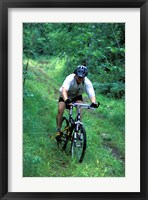 Mountain Biking on Providence Pond Loop Trail, White Mountain National Forest, New Hampshire Fine-Art Print