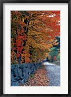 Fall Colors in the White Mountains, New Hampshire Fine-Art Print