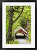 The Flume Covered Bridge, Pemigewasset River, Franconia Notch State Park, New Hampshire Fine-Art Print