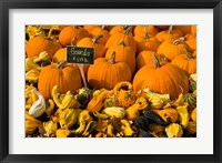Gourds at the Moulton Farm, Meredith, New Hampshire Fine-Art Print