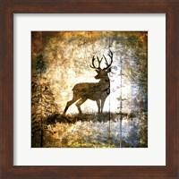 High Country Deer Fine-Art Print