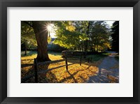 Yard of the Main House on Henderson Property in Litchfield Hills, New Milford, Connecticut Fine-Art Print