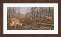 Battle Groud Fine-Art Print