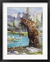 Grizzly Fine-Art Print