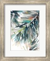 Evergreen Fine-Art Print