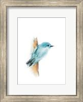 Blue Bird I Fine-Art Print
